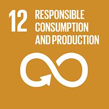 目標12. 促使城市與人類居住具包容、安全、韌性及永續性